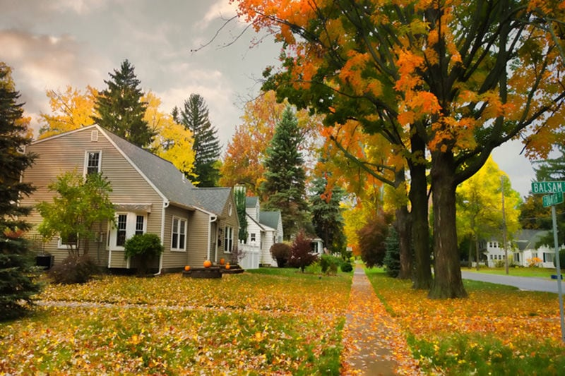 Autumn Neighborhood