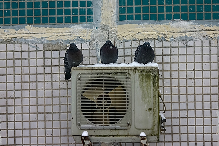 3 Telltale Signs It's Time for a New AC